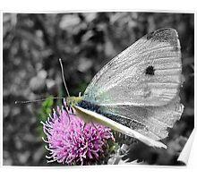 Gossamer Wings! Poster
