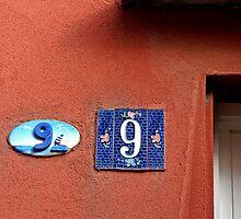 9 + 9 by Barbara  Corvino