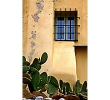 The cactus and the window Photographic Print