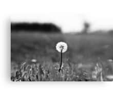 I've lost my focus Metal Print
