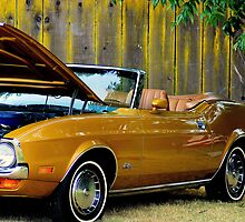 Gold Fingers.........................Golden Mustang Sally! by davesdigis