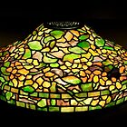Tiffany Lamp by Thad Zajdowicz
