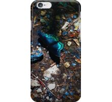 Black and Blue Butterfly iPhone Case/Skin