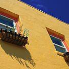side of building by Lynne Prestebak