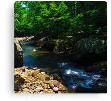 Creek Side Canvas Print
