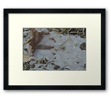 Ice Crystals 3 Framed Print