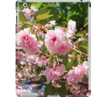 Boston Flowers iPad Case/Skin