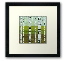 Summer Birches Framed Print