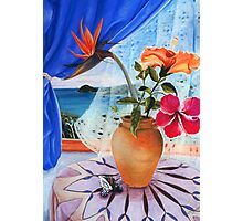 still life& cape tribulation Photographic Print