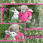 Bear's Adventure with Bunny  by L J Fraser