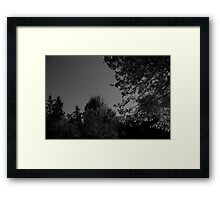 Cape Breton Night Sky Framed Print