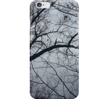 Tennessee winter  iPhone Case/Skin