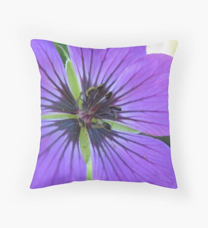With great clarity, The Orator Throw Pillow