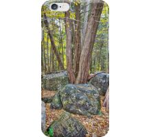 Come Sit Awhile iPhone Case/Skin