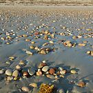 Pebbles at Aldinga Beach by catdot