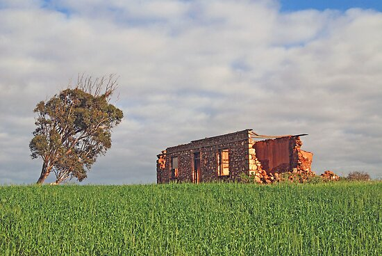 The Old Farmhouse, near Northhampton, Western Australia by Adrian Paul