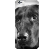 Lab Love iPhone Case/Skin