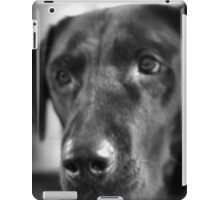 Lab Love iPad Case/Skin