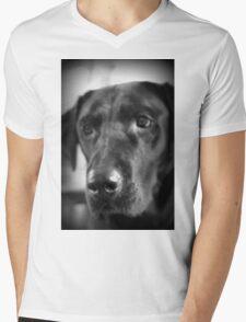Lab Love Mens V-Neck T-Shirt