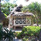 Mystery Island Beach Hut by judygal