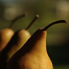pears by Clare Colins