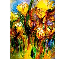A Vision of Spring...Tulips.. Photographic Print