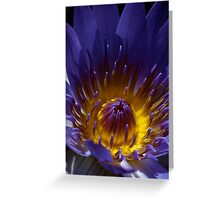 Heart of the Lily Greeting Card