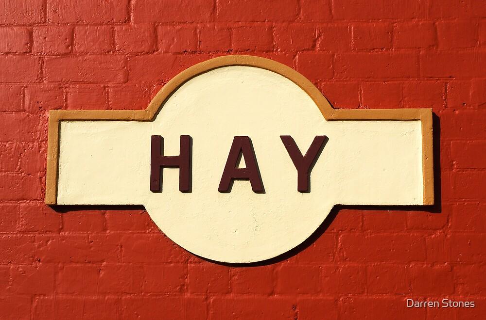 Hay Railway Station by Darren Stones