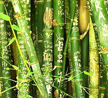 bamboo graffiti by Chris Parker