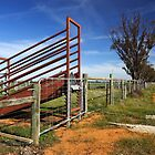 Stock ramp at Mathoura by Darren Stones