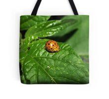Fake Lady Beetle Tote Bag