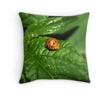 Fake Lady Beetle Throw Pillow
