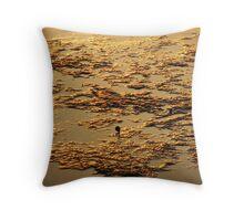 Golden Mud Sunset Throw Pillow
