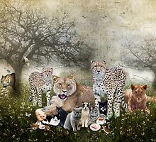 Big Cats and Small by Barb Leopold