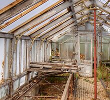 In An Abandoned Glasshouse by Roantrum