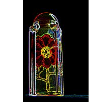 Rose in a Bottle Photographic Print