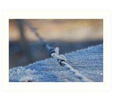 Ice spikes Art Print