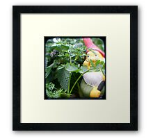 Parsley Gnome Framed Print