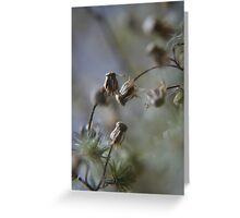 Gentle dance (from wild flowers collection)  Greeting Card