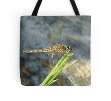 Blue Dasher on Native Grass Tote Bag