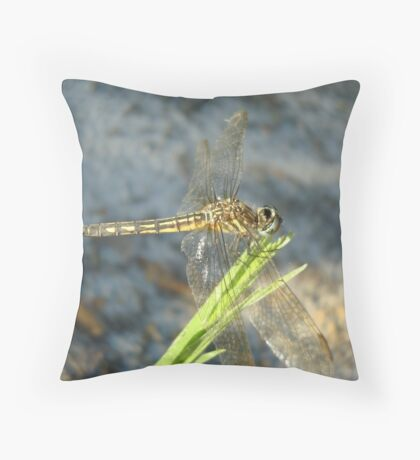 Blue Dasher on Native Grass Throw Pillow