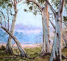 Mist On The Snow Gums by Diko