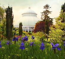 Perennial Garden by Jessica Jenney