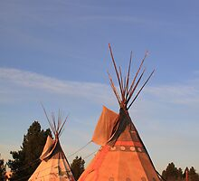 Tipi by WHOOPS