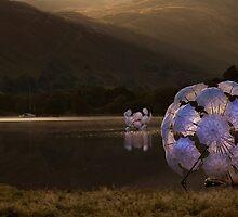 Fleur de Sel on Ullswater by SteveMG
