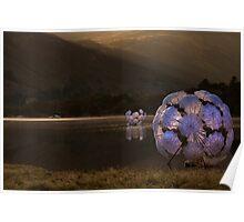 Fleur de Sel on Ullswater Poster