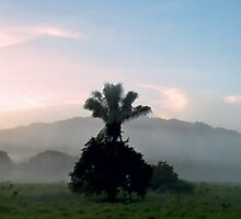 Morning in the Valley by Gene  Tewksbury