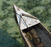 Carribean Water by Gene  Tewksbury