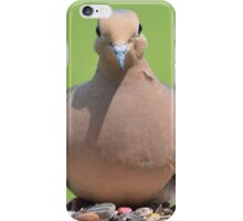 Mourning Dove iPhone Case/Skin