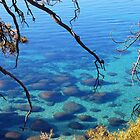 Lake Tahoe 2 by tom j deters